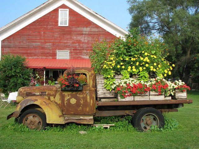 Auto mit blühenden Blumen, symbolisch für Autoflowering-Samen für selbstblühende Cannabispflanzen