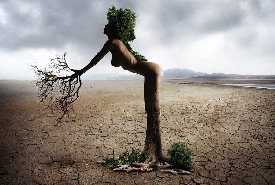 Pflanzenfrau, symbolisch für feminisierte Hanfsamen für weibliche Cannabispflanzen mit Sinsemilla-Blüte