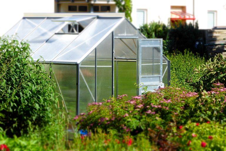 Kleines Gewächshaus in Holland von privaten Selbstversorgern
