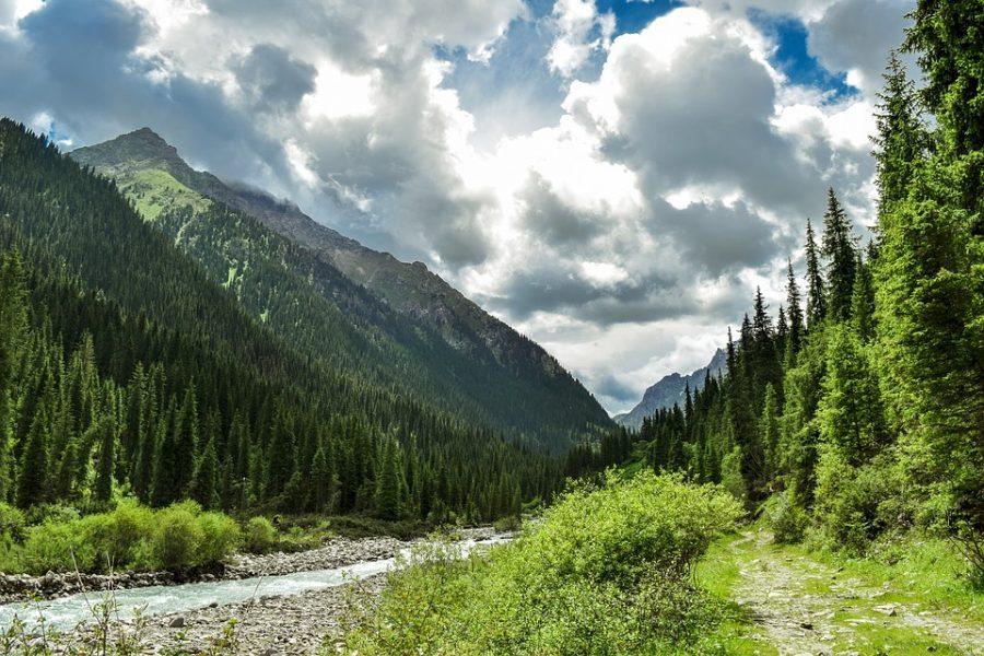 Wilde Gebirgslandschaft in Kasachstan, dem vermuteten Ursprungsland des Hanf
