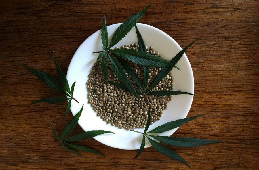 Hanfsamen, auch Cannabissame, Marihuanasamen oder Ganjasamen, in einem Teller mit Hanfblättern
